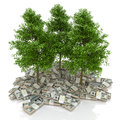 Big pile of money. dollars and tree. finances Royalty Free Stock Photo