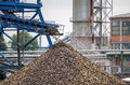 Big pile of sugar beet in sugar factory under the conveyor belt Royalty Free Stock Photo