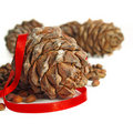 Big pine cone Royalty Free Stock Images