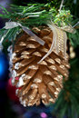 Big pine cone decoration Royalty Free Stock Image