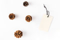 Big price tag with pine cones on white background Royalty Free Stock Photo