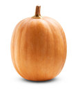 Big pumpkin on a white background clipping path Stock Images