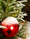 Big red ball on a snowy Christmas tree on the street at night Royalty Free Stock Photo
