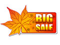 Big sale autumn label with leaf Royalty Free Stock Photos