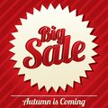 Big sale tag sticker icon for special offer vector bright autumn is coming Royalty Free Stock Photography