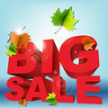 Big sale word autumn with foliage Royalty Free Stock Images