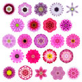 Big selection of various concentric mandala flowers isolated on white colorful kaleidoscopic collection in shape Stock Photography