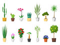 Big set of decorative house plants with pot isolated Royalty Free Stock Photo