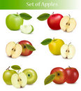 Big set of fresh apples. Royalty Free Stock Photos
