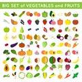 Big set of fruits and veggies