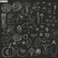 Big set of vegetables in sketch style on black background