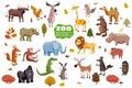 Big set of wild animals cartoon vectors. African, Australian, Asian, South and North American fauna predators and Royalty Free Stock Photo