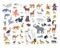 Big Set of World Animal Species Cartoon Vectors Royalty Free Stock Photo
