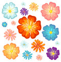 Big and small flowers illustration of the on a white background Stock Photography
