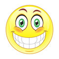 Big smile emoticon Royalty Free Stock Photo