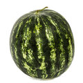 Big striped watermelon, isolated on white background Royalty Free Stock Photo