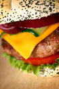 Big tasty burger close up of shallow dof Stock Photography