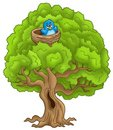 Big tree with blue bird in nest Stock Photos