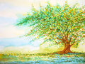 Big tree in grass field and blue sky, watercolor painting on paper