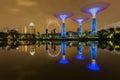 Big Tree light show night time, Singapore Royalty Free Stock Photo