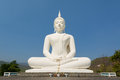 Big white buddha statue Royalty Free Stock Photo