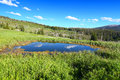 Bighorn national forest pond in the high altitudes of the mountains of wyoming Stock Photo