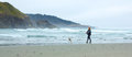 Biig river state beach mendocino california usa june wom woman walking a dog on big on th Royalty Free Stock Photo