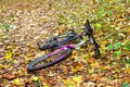 Bike in autumn leaves background alone Royalty Free Stock Photography
