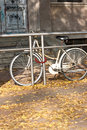 Bike in autumn parking on the dried leaves carpet Stock Photography