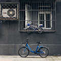 Bike-share mode is changing people's life