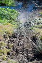 Bike traces in the mud by mountain spring Royalty Free Stock Photography
