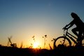 Biker bicycle sunset on a meadow at the Stock Images
