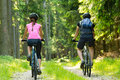 Bikers in forest cycling on track from behind Stock Photos