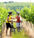 Bikers in vineyard Royalty Free Stock Image