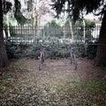 Bikes in rack in park Royalty Free Stock Photo