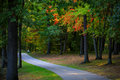 Biking trail through colorful autumn trees Royalty Free Stock Images