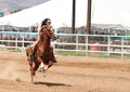 Bikini Barrel Racing Royalty Free Stock Image