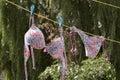 Bikini on clothes line Royalty Free Stock Photo