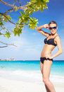 Bikini girl on the beach young beautiful woman in under tree of messerschmidia argentea Royalty Free Stock Images