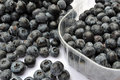 Bilberries Royalty Free Stock Photos