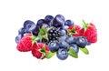 Bilberries, blueberries, raspberries and blackberries , Royalty Free Stock Photo