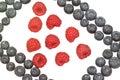 Bilberries and raspberries. Royalty Free Stock Photo