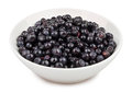 Bilberry bowl on white background Royalty Free Stock Photos