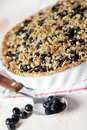 Bilberry pie Royalty Free Stock Photo