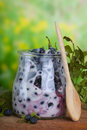 Bilberry  yoghurt Royalty Free Stock Photo