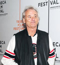 Bill Murray Photo stock