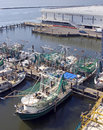 Biloxi Shrimp Boats Stock Photography