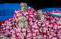 Bind of red onion in basket Royalty Free Stock Images