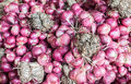 Bind of red onion in market Royalty Free Stock Images
