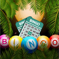 Bingo balls and cards over moon and palm trees Royalty Free Stock Photo